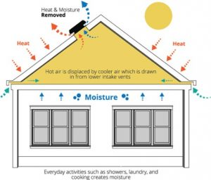attic ventilator thermostat