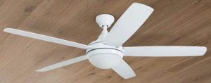Quiet Ceiling Fan With Light